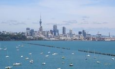 skytower auckland Auckland, New York Skyline, Cities, Places, Travel, Image, Lugares, Viajes, Traveling