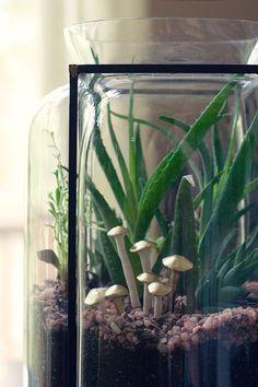 DIY polymer clay mushroom terrarium decorations.