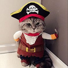 LingStar Pet Clothes Caribbean Pirate Dog Cat Costume Suit Party Apparel Clothing Plus Hat S *** To view further for this item, visit the image link. (This is an affiliate link and I receive a commission for the sales)