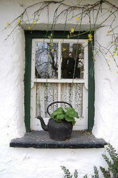 Irish kitchen window