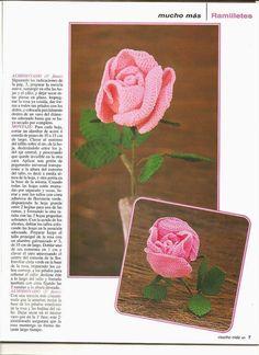 Le tocó el turno a ellas a las más bellas del mundo que tanta sastifacción nos dan en nuestro jardín... Una revista de 56 páginas de exce...