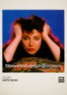 THE WORLD OF KATE BUSH: Promotional Publicity Photographs Count On You, Usa Network, Record Company, Columbia Records, Film Strip, Press Kit, Press Photo, Over The Years, First Time