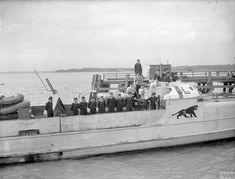 E-BOATS AND E-BOAT ADMIRAL SURRENDER. 13 MAY 1945, HMS BEEHIVE, FELIXSTOWE. 2 GERMAN E-BOATS, THE FIRST SURFACE CRAFT TO SURRENDER, WERE ESCORTED IN BY 10 BRITISH MTB'S. ON BOARD ONE OF THE E-BOATS WAS REAR ADMIRAL KARL BRUNING. One of the E-boats and her crew. Creator: Russell, J E (Lt) Source: © IWM (A 28561)
