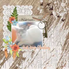 Layout created using Keep Climbing Bundle by Connie Prince, on sale for a limited time. Climbing, Goodies, Prince, Layout, Create, Sweet Like Candy, Gummi Candy, Page Layout, Mountaineering