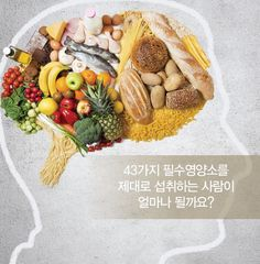 우리 몸에는 매일 43가지의 필수영양소가 필요하다는 것 알고 계셨나요? 우리는 이 중 얼마의 영양소를 섭취하고 있을까요? #yevo #예보코리아 #건강 #영양 #health #nutrition 예보코리아팀 박형윤 #19227 이메일: jazzphat@naver.com