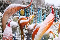 Chihuly Garden & Glass - Seattle, WA