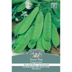 Mr Fothergill's Snow Pea Vegetable Seeds | Bunnings Warehouse