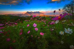 _/\_ by Charungroj Bunphabuth on 500px