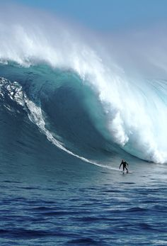 wslofficial: Rohan Annesley - bottom turnPhoto | Jamie ScottMore XXL Big Wave Awards