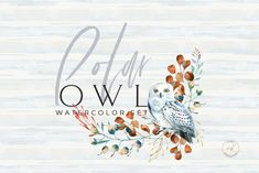 Winter set with high quality watercolor cliparts The set includes: - 4 Polar Owl cliparts, PNG, appr 3000 - 6 floral cliparts, PNG - 3 wreaths, PNG - 5 Watercolor Clipart, Wreath Watercolor, Watercolor Background, Watercolor Christmas, Floral Illustrations, Botanical Illustration, Graphic Illustration, Christmas Settings, Christmas Clipart