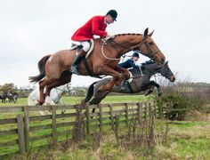 Fox hunting means jumping what ever may get in your way.
