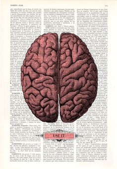 Brain USE IT Human Anatomy art Dictionary Print Human by PRRINT