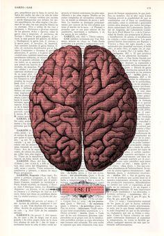 Brain USE IT Human Anatomy art Dictionary Print Human by PRRINT