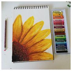Pentel Oil Pastels #sunflower #oil #pastel #drawing #sunfloweroilpasteldrawing Chalk Pastel Art, Soft Pastel Art, Pastel Artwork, Oil Pastel Paintings, Pastel Sunset, Chalk Pastels, Chalk Art, Crayon Painting, Crayon Art