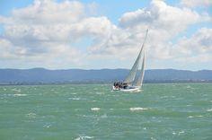 Auckland Bay, NZ