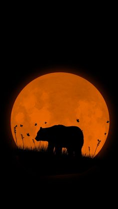 Grizzly-bear-Super-Moon-iPhone-Wallpaper