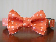 Bowtie Dog Collar  Carolina Gentleman in Orange by pecanpiepuppies, $30.00