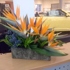 Low arrangement of birds of paradise, eryngium and tropical greens