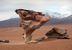 The stone tree - Bolivia. Elevation 13800 ft; Salar De Uyuni. Got to see this beauty in real life.