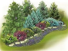 Privacy Landscaping, Low Maintenance Landscaping, Low Maintenance Garden, Front Yard Landscaping, House Landscape, Landscape Design, Garden Design, Peru, Small Front Yards