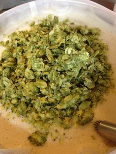 Homebrew Finds: Brewing More Beer's Pliny the Elder Kit!