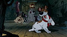 """Enter Dodger, one bad puppy."""