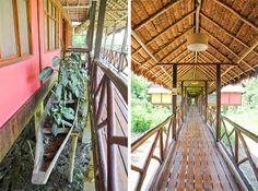 Heliconia Lodge, Iquitos Peru