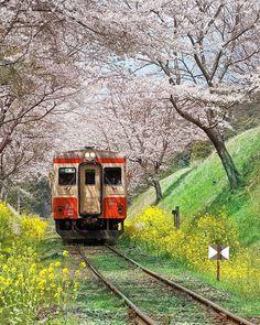 Aesthetic Japan, City Aesthetic, Japanese Aesthetic, Travel Aesthetic, Osaka, Japan Train, Japan Image, Japanese Landscape, Beautiful Places To Travel