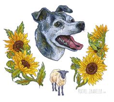 Desi // #chihuahua #sunflower #sheep #dog #portrait