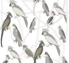Funny Parrots Mural