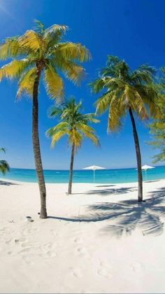 CAYMAN ISLANDS - îles Cayman