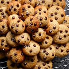 Mini Chocolate Chip Greek Yogurt Cookies that WON'T put a dent in your diet! They're chewy. They're soft. They're completely addictive and easy to make. They're only 23 calories per cookie or Weight Watchers 1 sp EACH!   http://cafedelites.com
