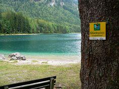 Langbathsee Austria, Europe, Spaces, Mountains, Nature, Plants, Travel, Naturaleza, Viajes