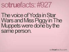 Yoda & Miss Piggy