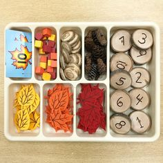 We created a new fall inspired math tray for students to explore with next week. Fall Preschool Activities, Counting Activities, Preschool Math, Toddler Activities, Maths, Letter S Activities, Science Center Preschool, Seasons Activities, Thanksgiving Preschool