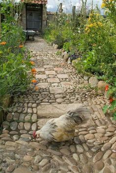 Lovely rustic cobbled garden path