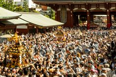 Asakusa's Sanja Matsuri Festival