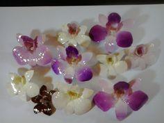 Tutorial - How to Coat Flowers in Resin