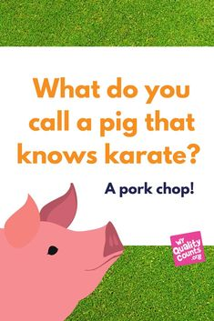 kid jokes | what do you call a pig that knows karate? Kid Jokes, Jokes And Riddles, Funny Jokes, Funny Stuff, Christmas Jokes For Kids, After School, Little People, Cute Quotes