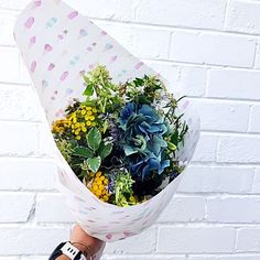 Can you believe March is here? I am back into full swing here at The Stylist Splash receiving beautiful products from lovely local business's. Planter Pots, March, Stylists, My Love, Flowers, Beautiful, Royal Icing Flowers, Flower, Florals
