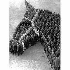 Tribu/ zum Gedächtniß der verstorbenen Pferde im 2. Weltkrieg