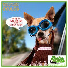 Somente este final de semana. Óculos para Pets de R$ 72,00 por R$ 50,00.    Aproveite Bichonaweb.com.br