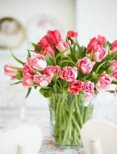 tulpenstrauss erfreut die augen im haus