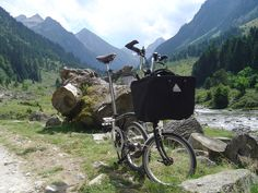 brompton_fruitiere   Flickr - Photo Sharing!
