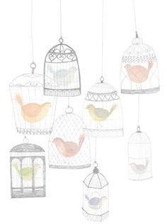 Adorable simple birds in bird cages illustration.