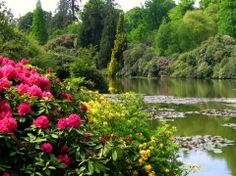 english gardens, english countryside, landscaping, flowers, nature