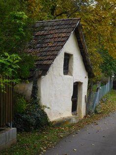 Az ország legkisebb, kihalófélben lévőnek mondott, 50 fő alatti településeit járták be. Összesen 47 falu, 7 megyében, ennyi vívja élet-halál harcát a legkisebb falvakból Magyarországon. Elkészült az Éledő falvak honlap, a projekt kezdete óta számtalan család talált új otthonra az ismeretlen vidéki tájakon. Lőrincz Zsuzsanna, akit már a Kiskosár Bevásárló Közösség révén is ismerhetnek az esztergomiak, 2015 tavaszán indult el a nagy úton. Interjú. Hungary, My Dream, Shed, Outdoor Structures, Cabin, House Styles, Places, Outdoor Decor, Nature