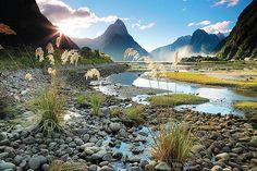Milford Sound & Mitre Peak - Evening. New Zealand #landscape #nature #wanderlust