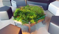 © Habitat Horticulture