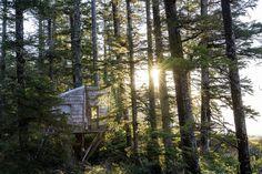 Remote tree cabin off the coast of British Columbia, Canada.
